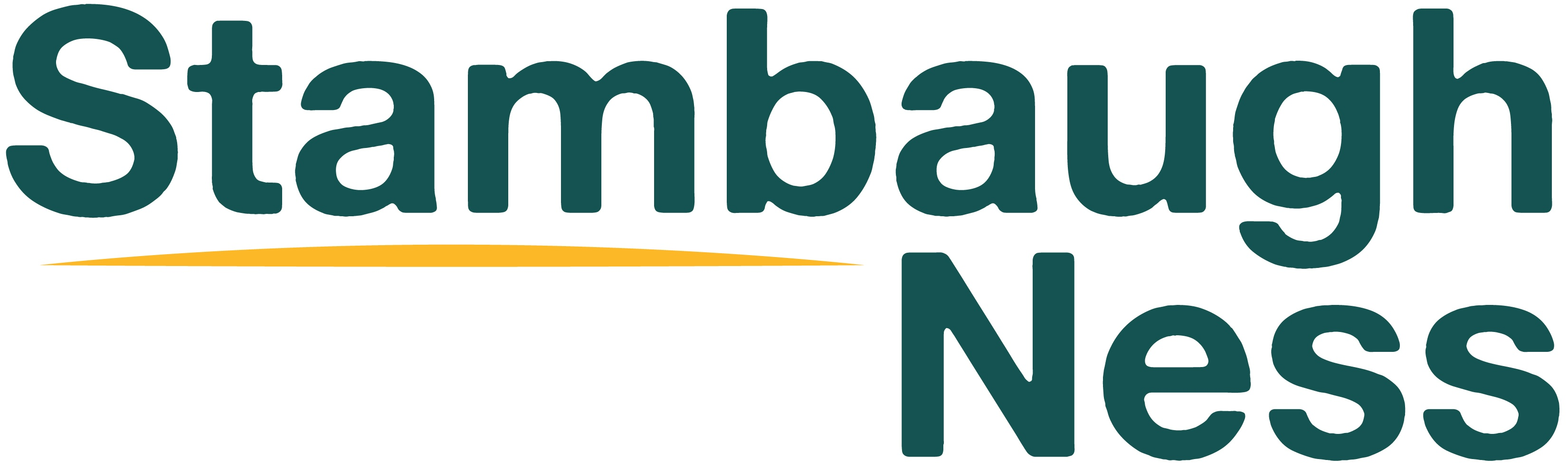 THRIVE 2018 Premier Sponsor: Stambaugh Ness