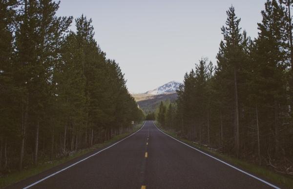 country road-161305-edited.jpg