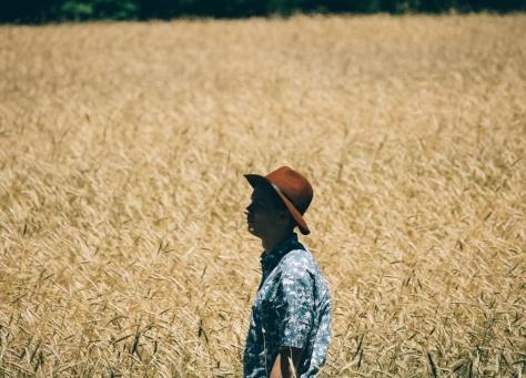walking field-1-383506-edited